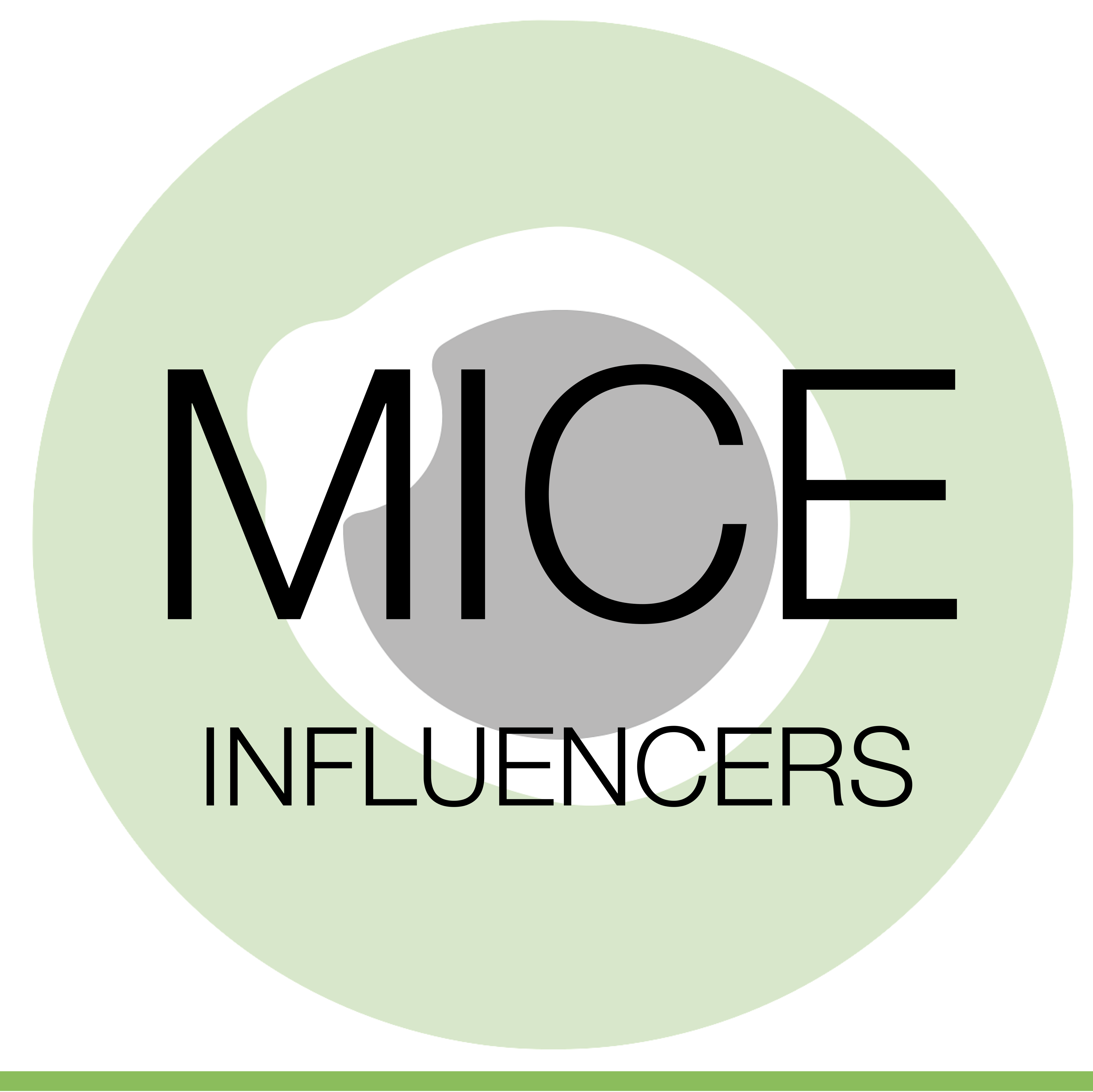 MICE Ireland.png